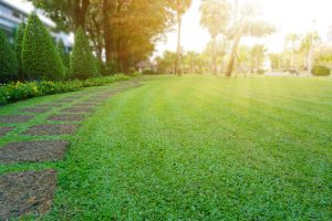 Pattern,Of,Laterite,Stepping,Stone,On,A,Green,Lawn,Backyard